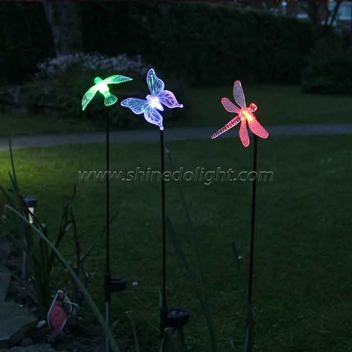 Solar Landscape Bird Butterfly Dragonfly Animal Night Path Light